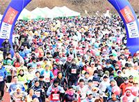 [TF영상] '2014 THE FACT 42.195 Race', 시즌마감 레이싱 한판!