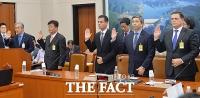 [TF포토] 국정감사 증인 선서하는 독일 수입차 CEO