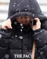 [TF사진관] 서울 첫 대설주의보...체감온도 영하권 '쌀쌀'