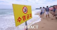 [TF포토] '거센 파도, 해수욕 금지'…피서객은 '우울'