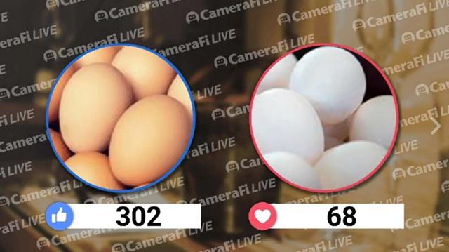 국산 달걀 vs 수입 달걀, 당신의 선택은? 소비자는 국산 달걀을 더 선호했다. /더팩트 페이스북 캡처
