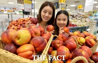 [TF포토] 이마트, '침샘 자극하는 천홍 천도복숭아 할인 판매'