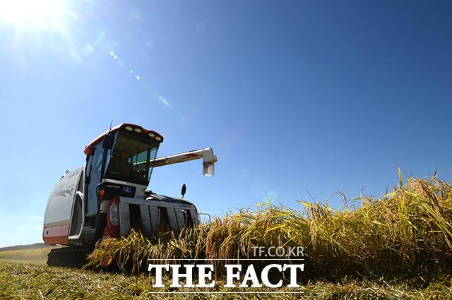 오늘도 우리의 쌀을 열심히 수확하는 농민들