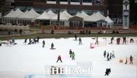 소비자원, 스키장 이용자 10명 중 4명 안전모 미착용