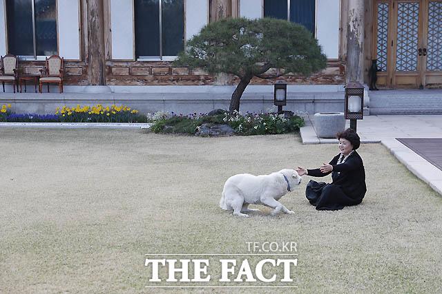 지난 4월. 김정숙 여사가 반려견 마루와 관저 마당에서 함께 하고 있다./청와대 제공