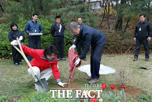 지난 4월 5일 문 대통령과 김 여사가 청와대 내 관저에 미선나무를 심고 있다./청와대 제공