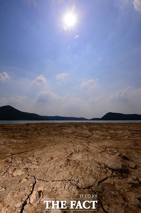 뜨거운 태양아래 갈라지는 이동저수지의 바닥.