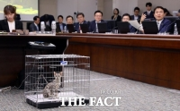 [TF이슈] 국정감사 첫날 '동물 학대' 논란…동물단체 '발끈'