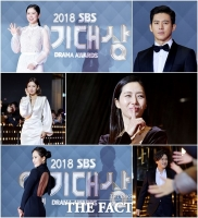 [TF사진관] 대상은 과연?…'2018 SBS 연기대상을 빛낸 ★들'