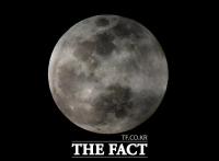 [TF포토] 정월대보름 '웅장한 보름달'