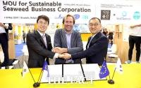 한국시즈, 유럽시장에 해조류 수출...'양해각서 체결'