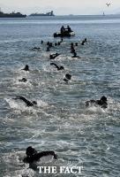 [TF포토] 진해 바다 가르는 해군 해난구조대(SSU)