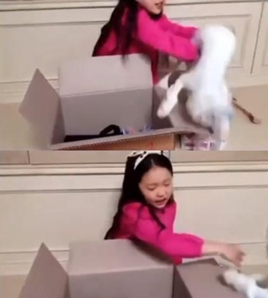 아역배우 구사랑이 고양이를 거칠게 다루는 모습이 담긴 영상이 공개되자 고양이 학대 논란이 일었다. /구사랑 SNS 캡처