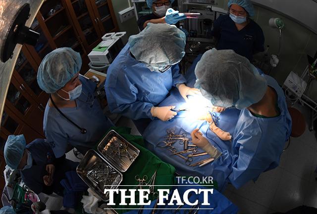연성찬 서울시야생동물센터장(오른쪽)을 비롯한 의료진이 19일 교통 사고로 다리부상을 입은 너구리의 수술을 하고 있다.