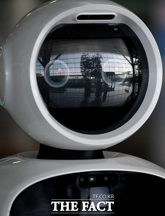 로봇 당황? 인공지능 안내로봇의 시야에는 텅 빈 출국장이 담겨있다.