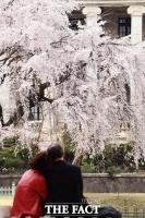 [TF포토] '로맨틱한 봄'