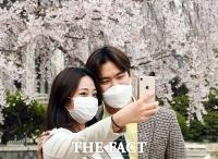 [TF포토] '꽃구경에도 마스크는 필수'
