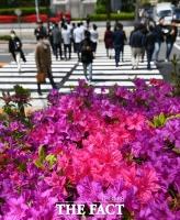[TF포토] 화창한 봄날씨, 분주한 시민들