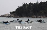 [TF포토] 황금연휴, '즐거운 서핑의 계절'