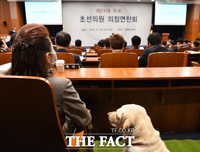 안내견 조이와 함께 문희상 국회의장 특강 듣는 김예지 미래한국당 당선인