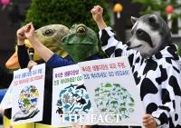 [TF포토] 채식 촉구하는 시민단체