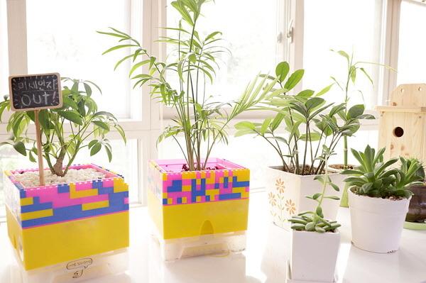 현대백화점은 폐플라스틱을 모아 친환경 재생 화분을 제작할 예정이다. /현대백화점 제공
