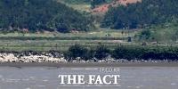 [TF포토] 손에 잡힐듯 보이는 북한 주민들
