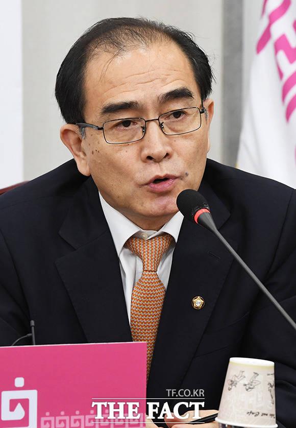 발언하는 태영호 의원