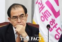 [TF사진관] 고민 깊어진 '북한 전문가' 태영호 의원