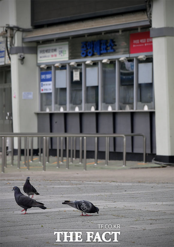인적 없는 매표소를 반긴 건 비둘기뿐.