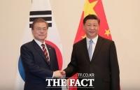시진핑, 文대통령에 답전…