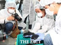 [TF사진관] '유충은 없습니다!'…활성탄흡착지 공개한 아리수정수센터