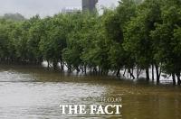 [TF포토] 불어난 물에 잠긴 한강 산책로 가로수