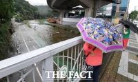 [TF포토] 불어난 강물에 산책로 잠긴 홍제천