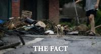[TF포토] 산사태로 집 잃은 강아지