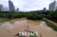 [TF포토] 흙탕물이 덮친 여의도 샛강 산책로