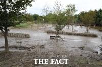 [TF포토] 진흙으로 뒤덮혀 처참하게 변한 여의도 한강공원