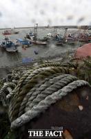 [TF포토] 홋줄에 단단히 고정된 어선들