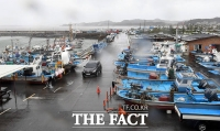 [TF사진관] '하이선' 피해 육지로 올라온 어선들