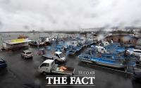 [TF포토] 주차장에 자리 잡은 어선들