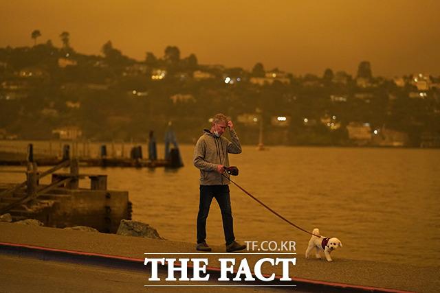 산불 연기로 하늘이 뿌옇게 변한 아침 애완견과 산책하는 한 남성.
