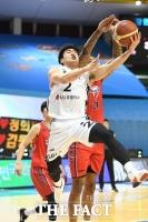 [농구토토] 농구팬 37%