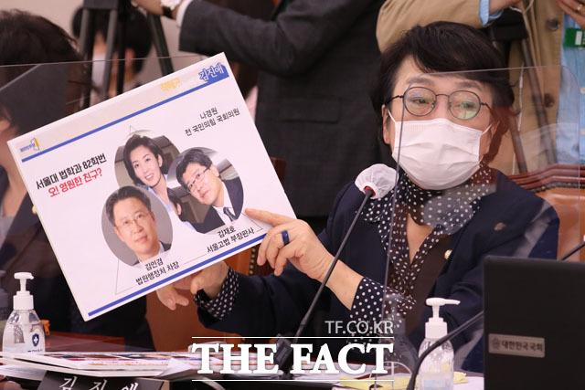 나경원 전 의원 소환한 김진애 열린민주당 의원.