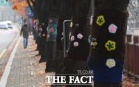 [TF포토] 알록달록 옷입은 가로수