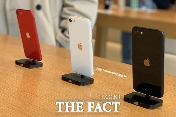 애플도 지난 5월 보급형 아이폰인 아이폰SE를 선보이며 보급형 시장에 뛰어들었다. /최수진 기자