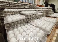 미국산 계란 살펴보는 시민들 [포토]