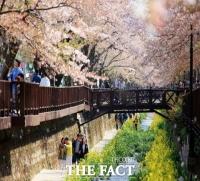 전국 최대 봄꽃 축제 '진해군항제' 올해도 전면 취소