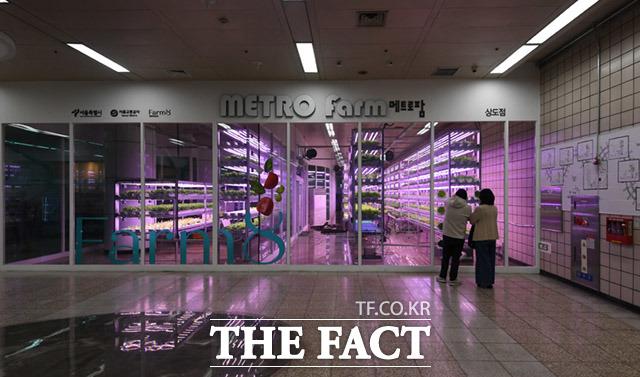 서울 지하철 7호선 상도역 내에 위치한 메트로팜.