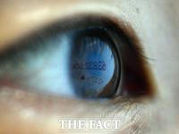 반등하는 비트코인 시세에 빛나는 눈동자 [포토]