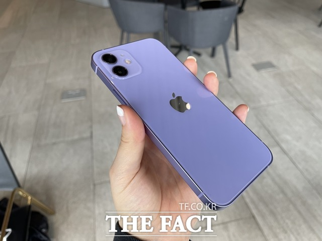 올해 출시된 퍼플 색상은 전작(아이폰11) 퍼플 모델 대비 밝아졌다. /최수진 기자